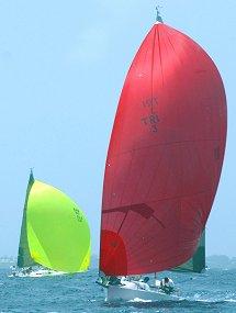 sailing_regatta