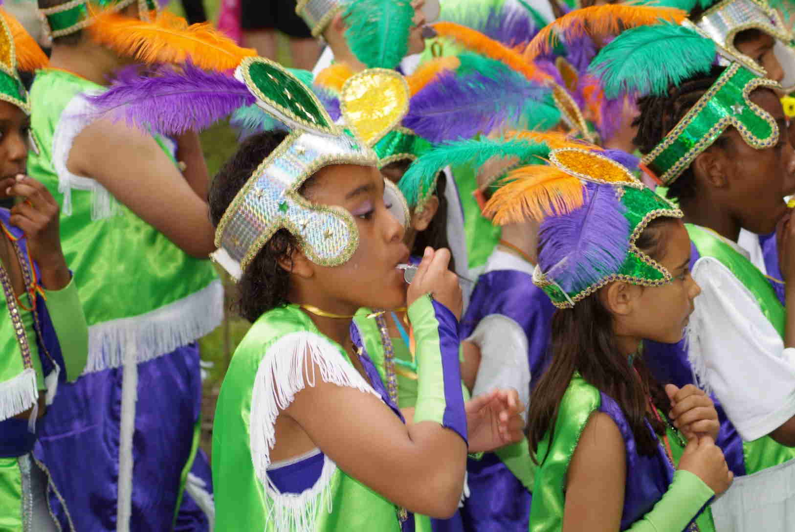 What is Caribbean-American Heritage? Help! I need to write an essay!?