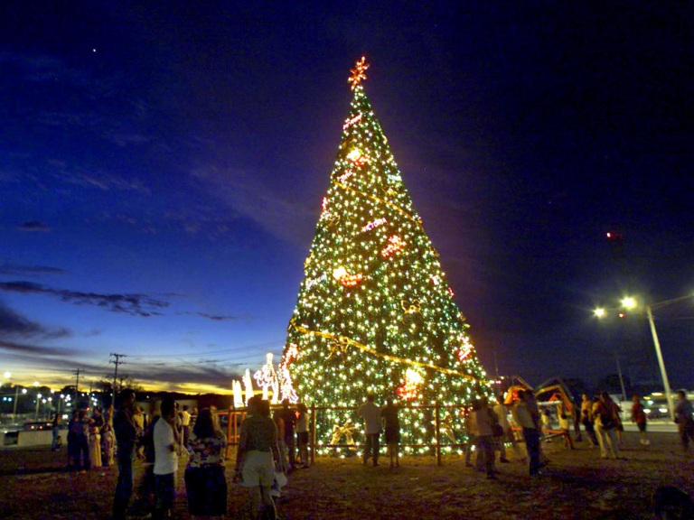 there are parrandas in puerto rico pastorelas in mexico and christmas trees and mistletoe in the us this - Puerto Rico Christmas Tree Decorations