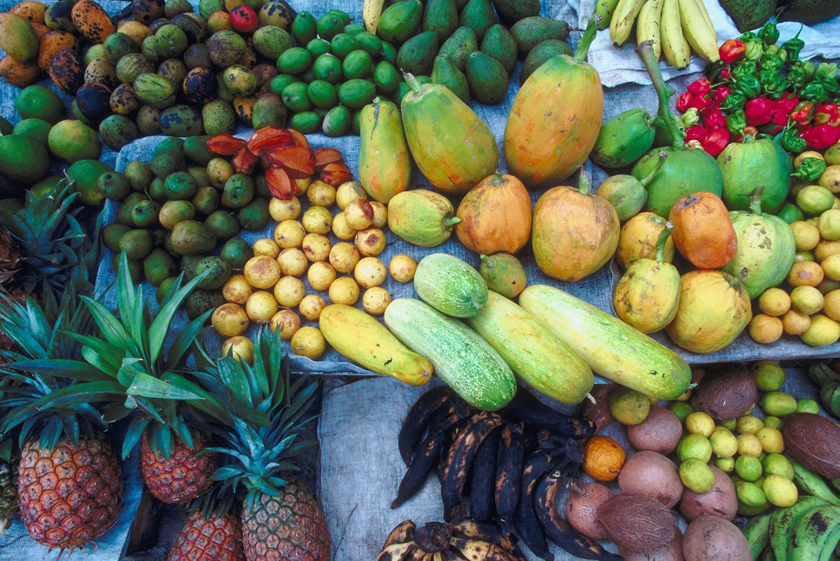 Imported food not cheaper than local in the long run
