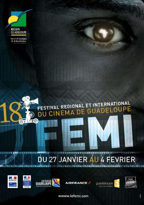 FEMI_n21