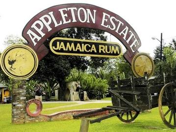 lascelles distributors jamaica
