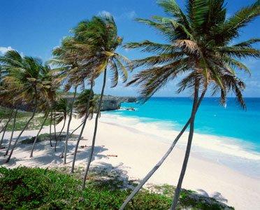Modern Renewable Energy Factory In Caribbean Opens In