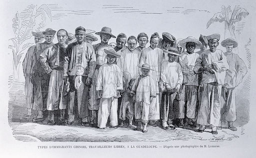 Types of Chinese immigrants as free workers in Guadeloupe