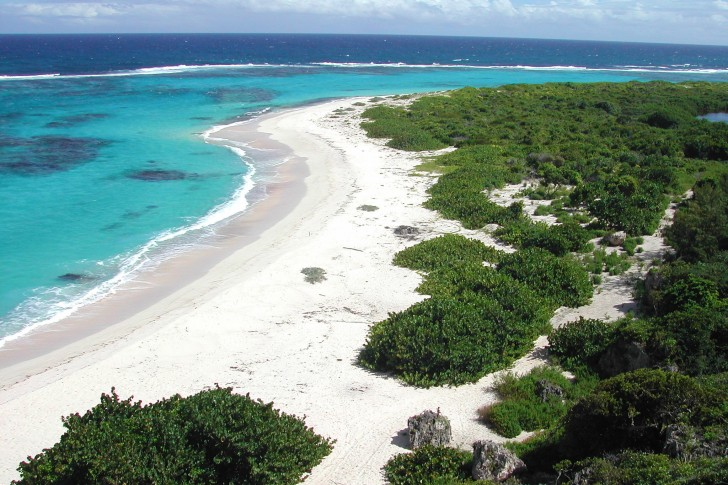 antigua-and-barbuda-island-beach-caribbean-485x728