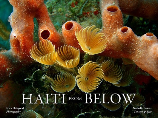 Haiti-From-Below-cover--e1362520791132
