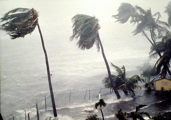 Tropical-Storm-12959