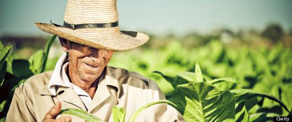 CUBA-FARMERS-large570