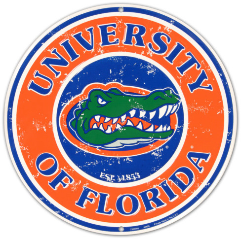colleges for creative writing in florida Which schools offer english majors and degrees in florida the creative writing program includes a fiction or the university of florida offers two english.