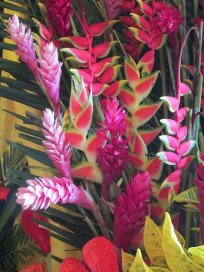 flower.IMG_0720