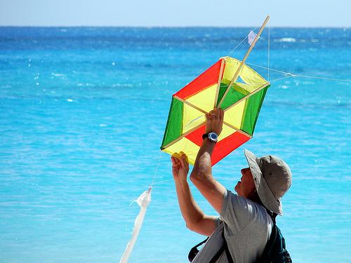 kites (1)