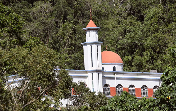 Puerto-R-mosq