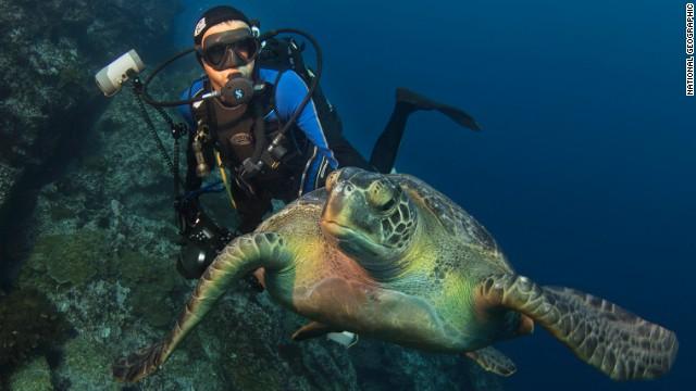 enric-sala-turtle-horizontal-gallery