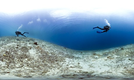 Caribbean coral reefs : Coral Deadzone, Bonaire
