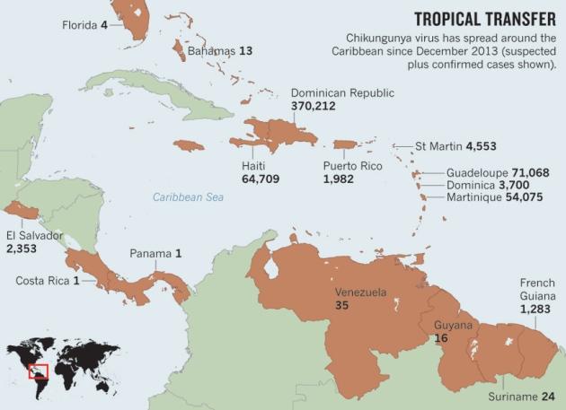 chikungunya-map