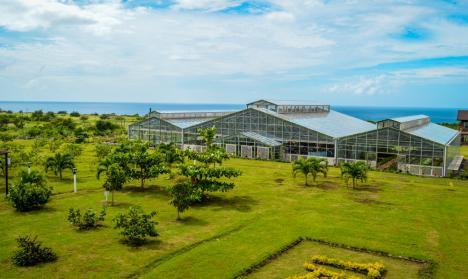 eco-park-greenhouse