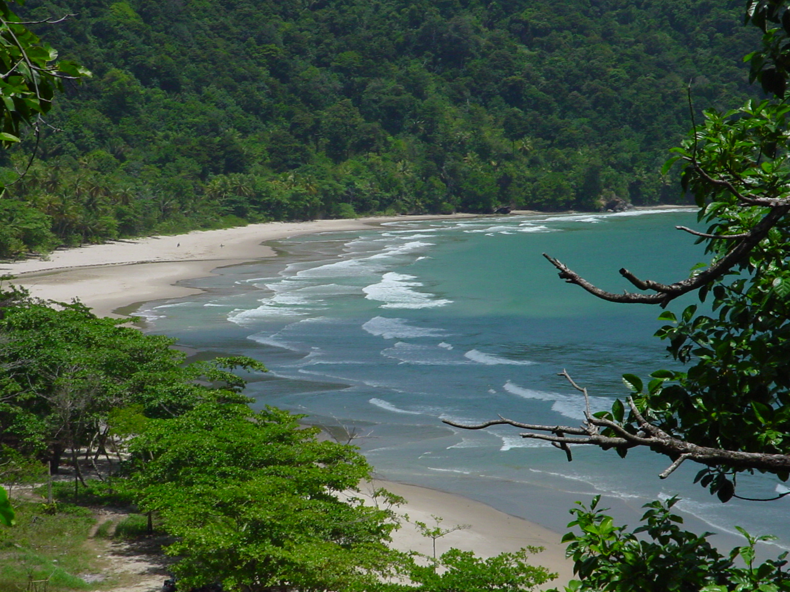 Eco-Tourism Options in Trinidad and Tobago