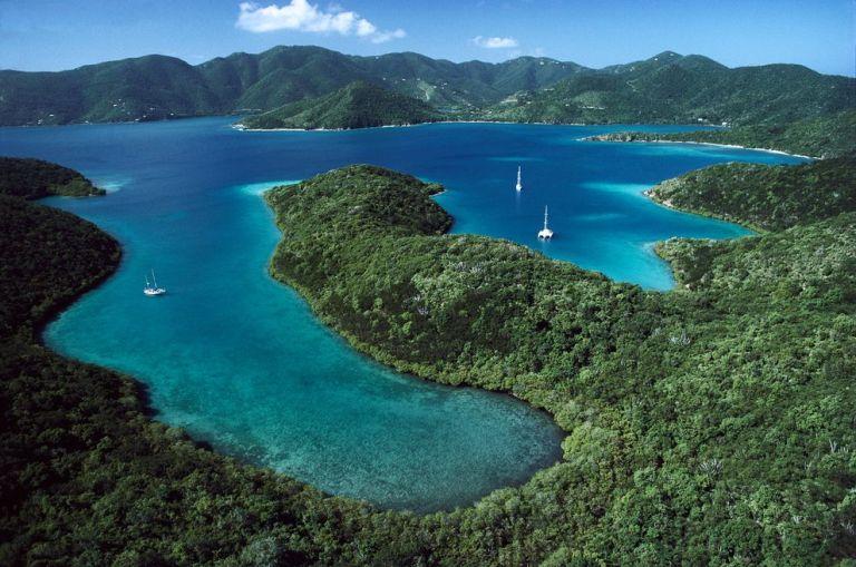 coral-mangroves-usvirgin-islands-21_88441_990x742