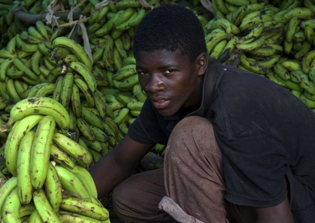 Boy Sells Bananas in Newly-Revived Port-au-Prince Market