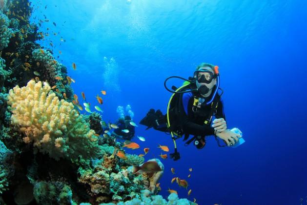 barrier-reefs