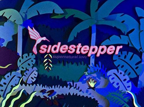 Sidestepper_Supernatural_Love-500x372.jpg
