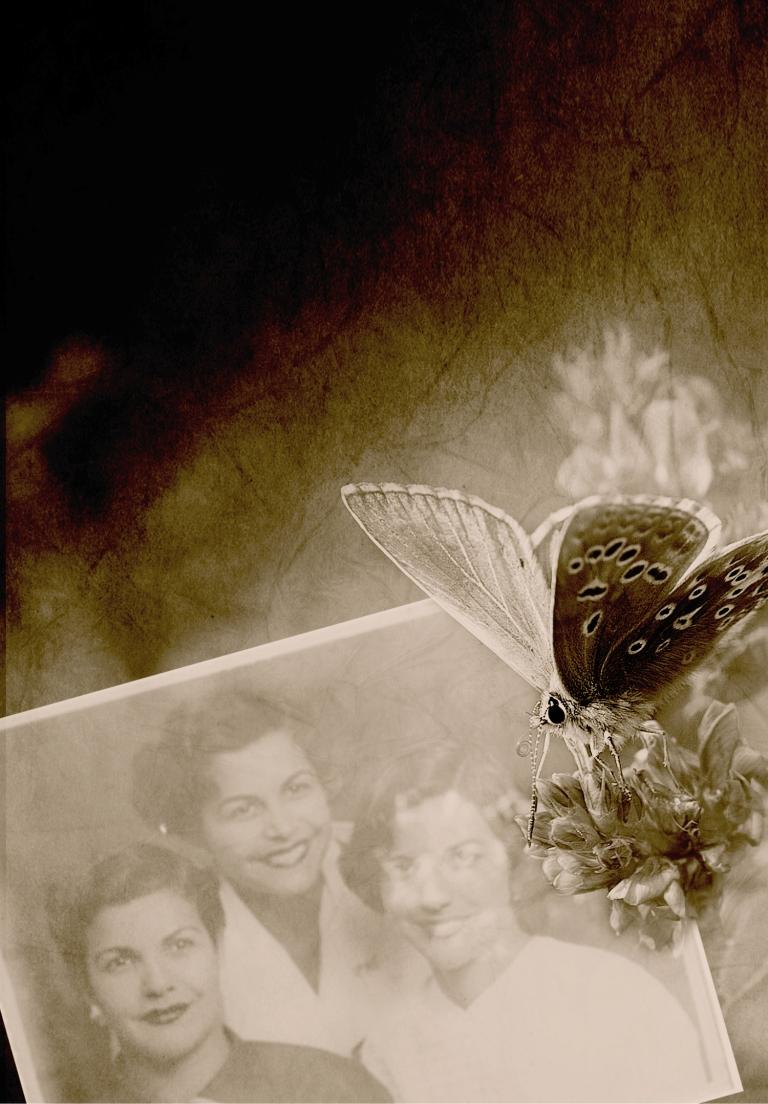 TV024_InTheTimesOfTheButterflies_Image+ONLY-1.jpg