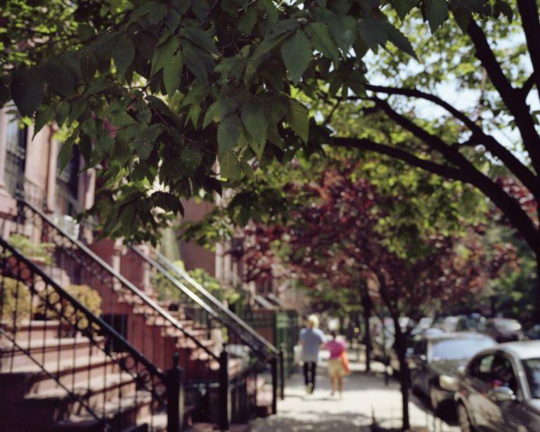 A-Couple-Walking-Harlem-2015-e1477931429100.jpg
