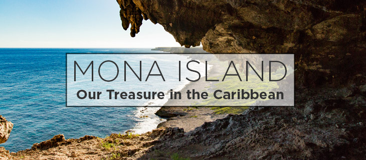 island-conservation-preventing-extinctions-mona-island-feat.jpg