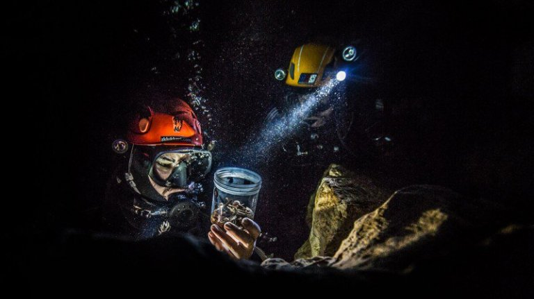 underwater-caving-lead_h.jpg