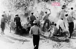 The Forgotten Parsley Massacre Still Plagues Dominican-Haitian Relations –  Repeating Islands