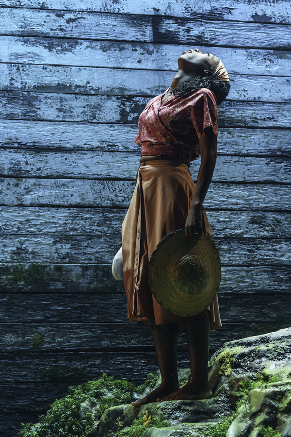 tn-500_nikkiamuka-bird(ellida)intheladyfromtheseaatthedonmarwarehousedirectedbykwamekwei-armahdesignedbytomscutt.photobymanuelharlan2.jpg