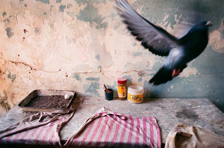 001.Havana2007-1.jpg