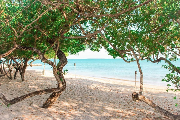 Playa-Manglares-Isla-Baru-Colombia-Beach-Entrance