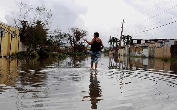 flood2901