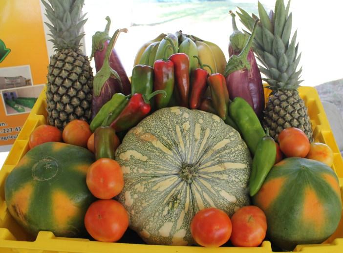 agricultural-produce.jpg
