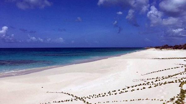 beach_976