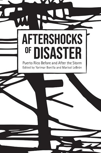 Aftershocks of disaster_8_1