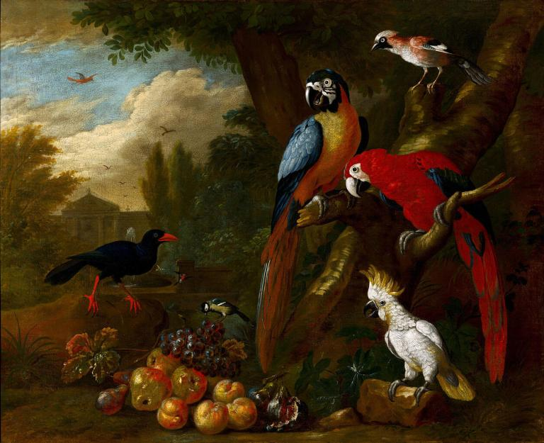 1257px-bogdani_jakob_-_two_macaws_a_cockatoo_and_a_jay_with_fruit_-_google_art_project_1.jpg