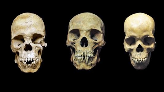 2_skulls_1000p