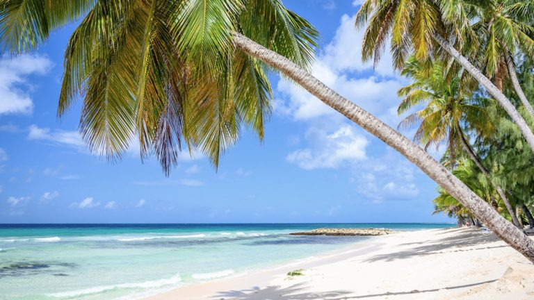 UNCOMMON-CARIBBEAN-ZOOM-BACKGROUNDS-BARBADOS-2-1200x675.jpg